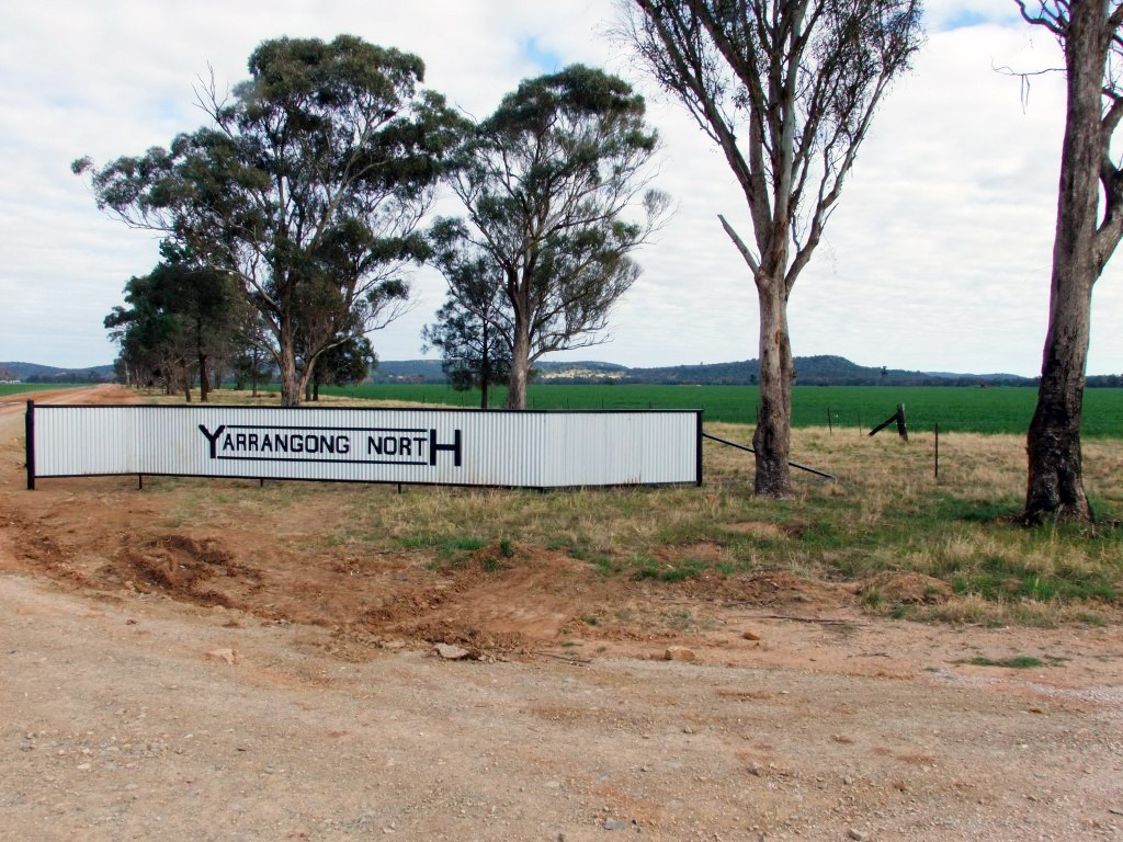Farm for Sale - Address available by request, Forbes NSW - Farm Property