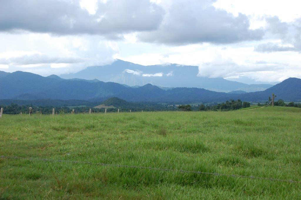 Farm for Sale - Address available by request, East Palmerston QLD - Farm Property