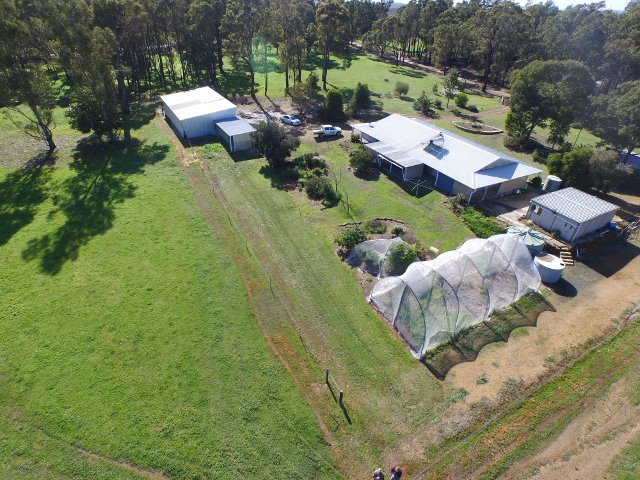 Farm for Sale - 62  Brookhampton Road, Brookhampton WA - Farm Property