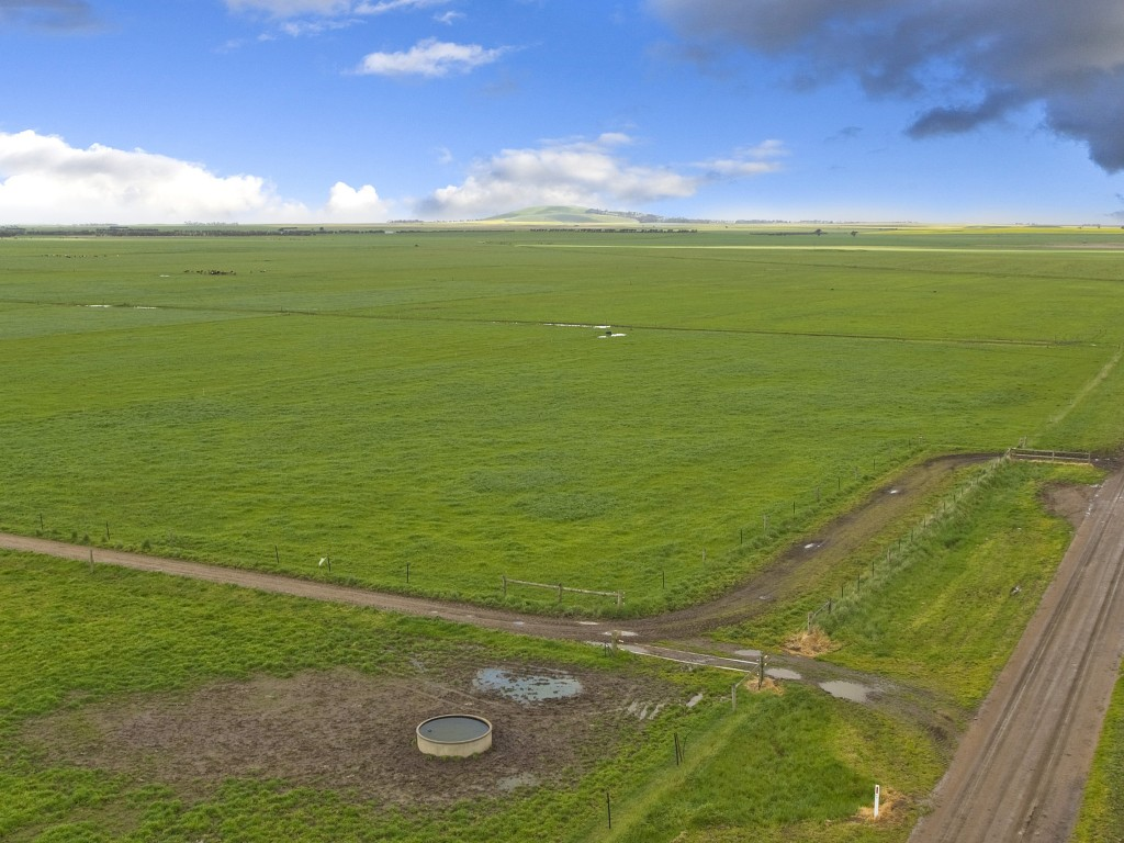 Farm for Sale - 170 Beal Road, Irrewarra, VIC - Farm Property