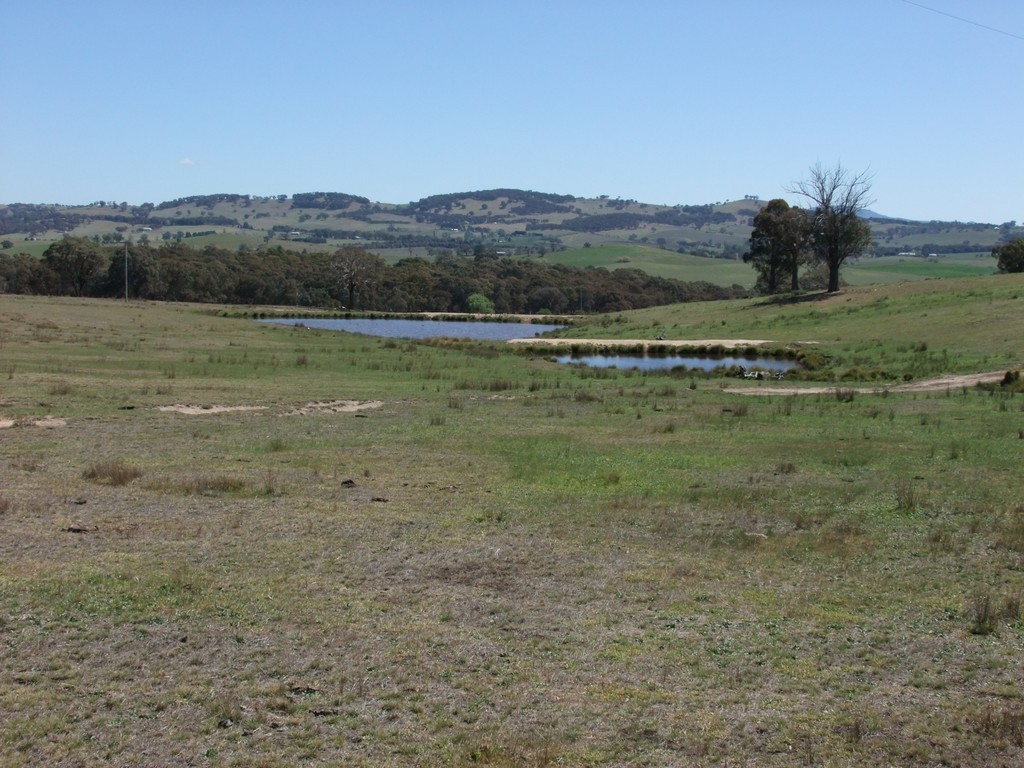 Farm for Sale - Address available by request, Orange NSW - Farm Property