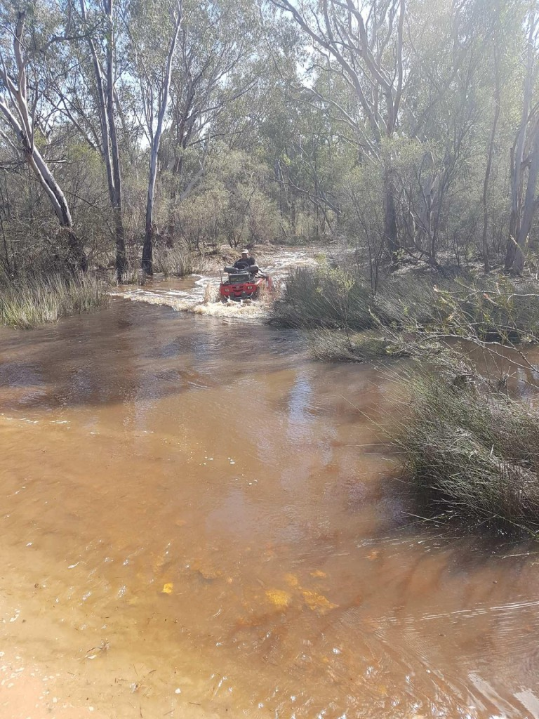 Modern Pig Sty: 1506 Werah Creek Rd Wee Waa NSW