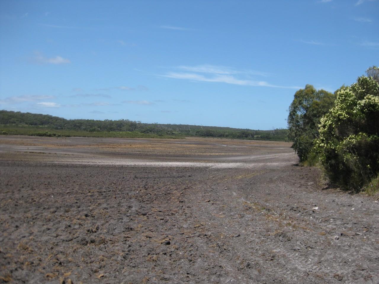 Farm for Sale -  Harcus River Road, West Montagu TAS - Farm Property