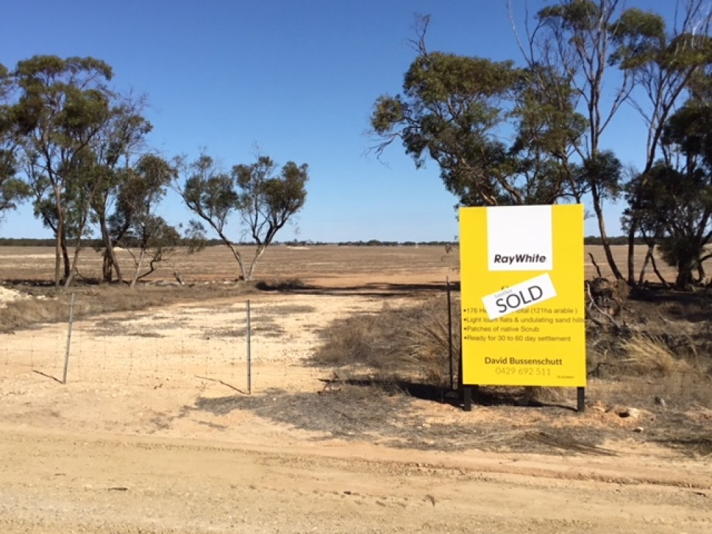 Farm for Sale - Lot 2 Pipeline Road, Arthurton SA - Farm Property