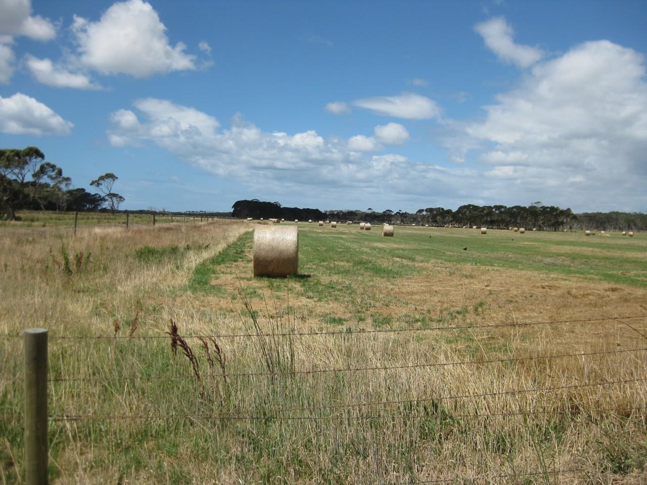 Farm for Sale - Lot 1 Anthonys Beach Road, Stanley TAS - Farm Property