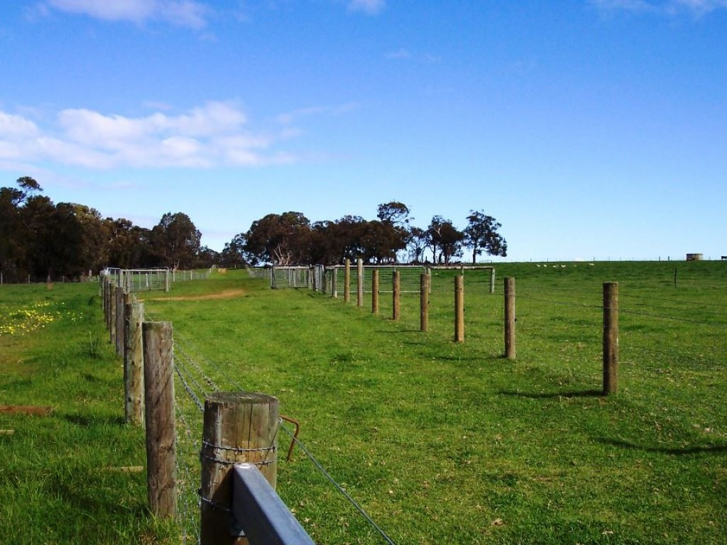 Farm for Sale - 1152 Millbrook Rd, Albany WA - Farm Property