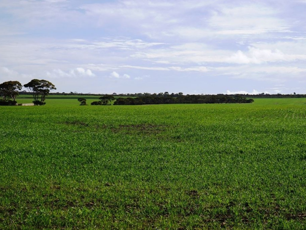 Farm for Sale - Address available by request, Holleton, WA - Farm Property