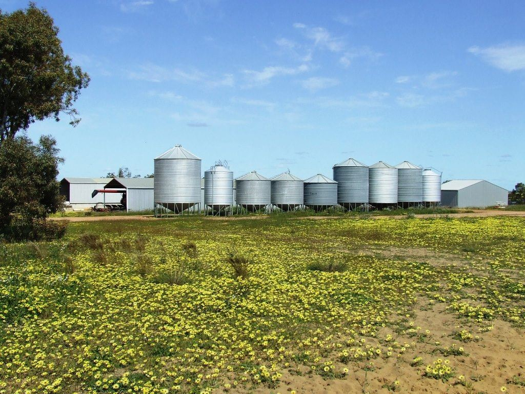 Farm for Sale - Address available by request, Three Springs, WA - Farm Property