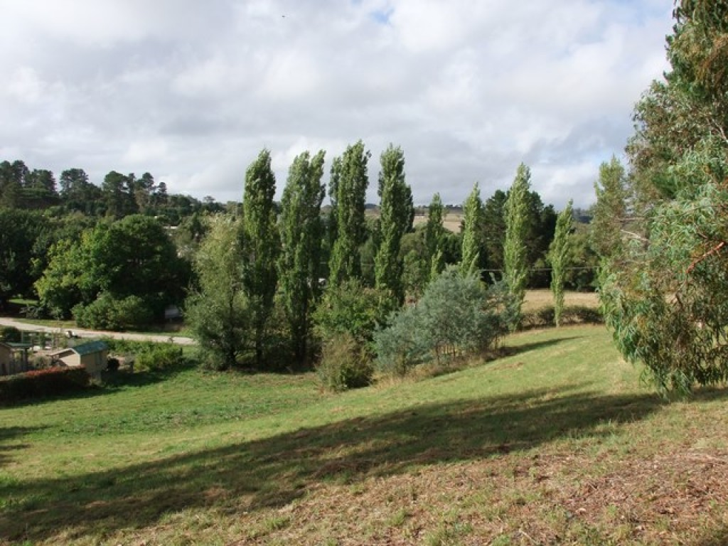 Farm for Sale - Address available by request, Rydal, NSW - Farm Property