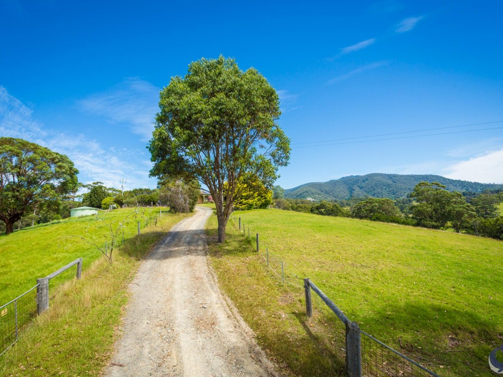 Farm for Sale - 8217 Princes Highway, Central Tilba, NSW - Farm Property