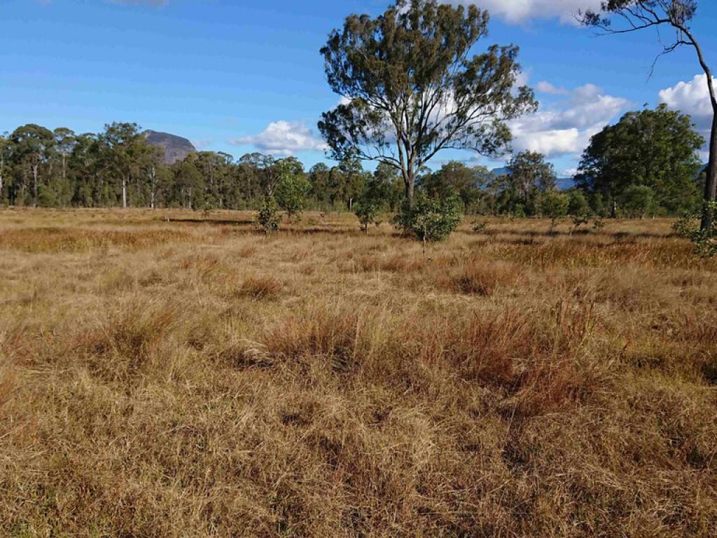 Farm for Sale - 7464 Cunningham Highway, Mount Edwards, QLD - Farm Property