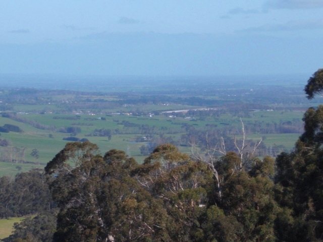 Farm for Sale - 815 Jacksons Track, Jindivick, VIC - Farm Property
