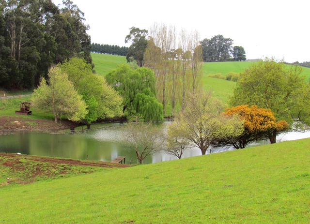 Farm for Sale - 999 Morwell - Thorpdale Road, Thorpdale, VIC - Farm Property