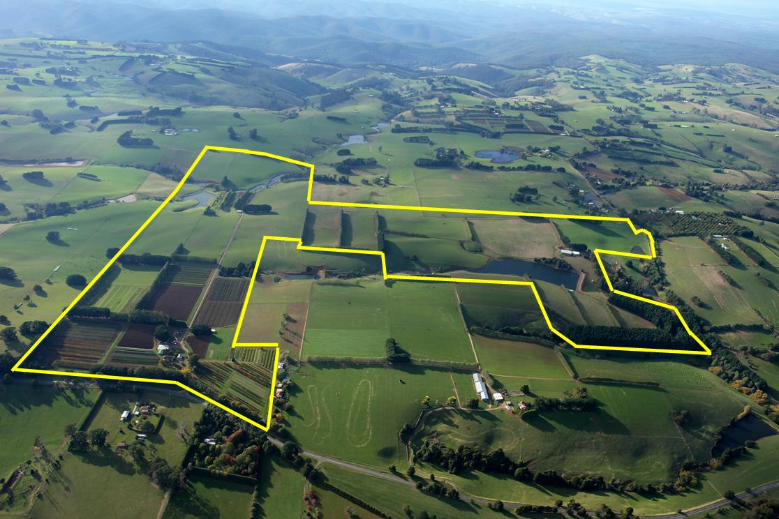 Farm for Sale - 2890 Main Neerim Rd & 1520 Neerim East Rd, Neerim, VIC - Farm Property