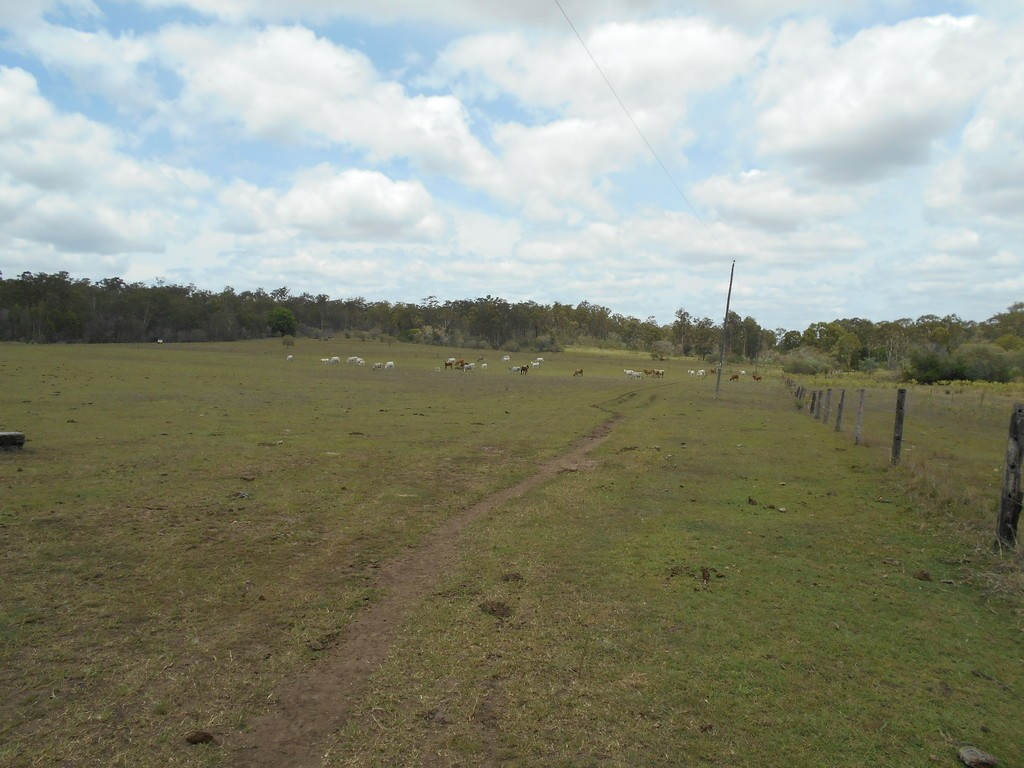 Farm for Sale - Address available by request, Gin Gin, QLD - Farm Property