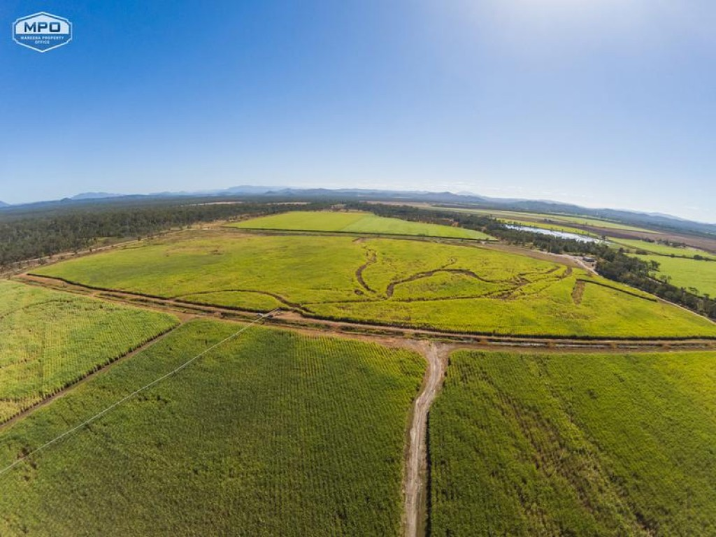 Rural Property & Farms for Sale -  Pickford Road - Farm Property