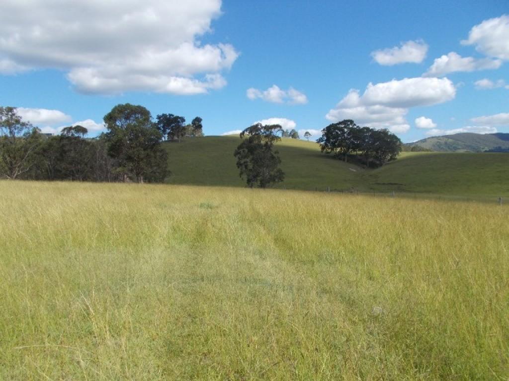 Farm for Sale - 1472A Glendonbrook Road, Glendonbrook, NSW - Farm Property