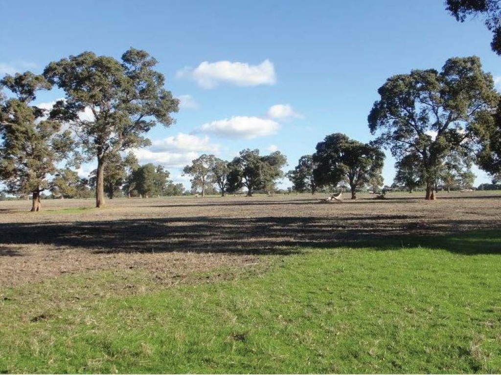 Farm for Sale - ' Boyanup - Picton Road ', Dardanup, WA - Farm Property