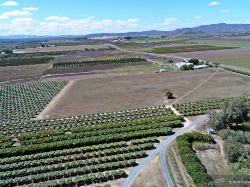 Farm for Sale - Address available by request, Dimbulah QLD - Farm Property