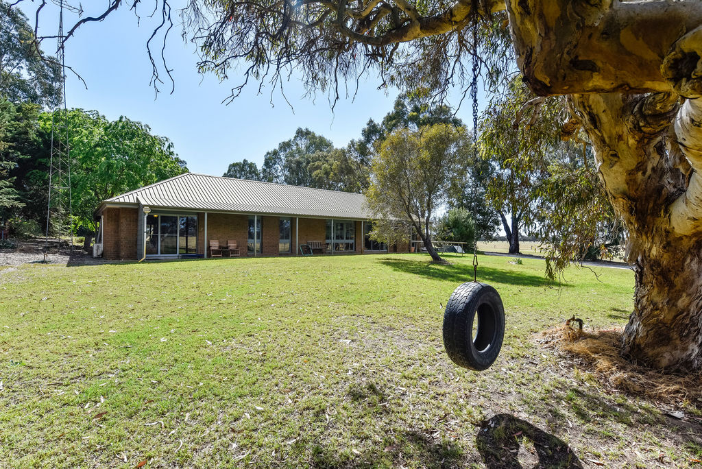 Farm for Sale - 139 Emu Springs Road, Tintinara, SA - Farm Property
