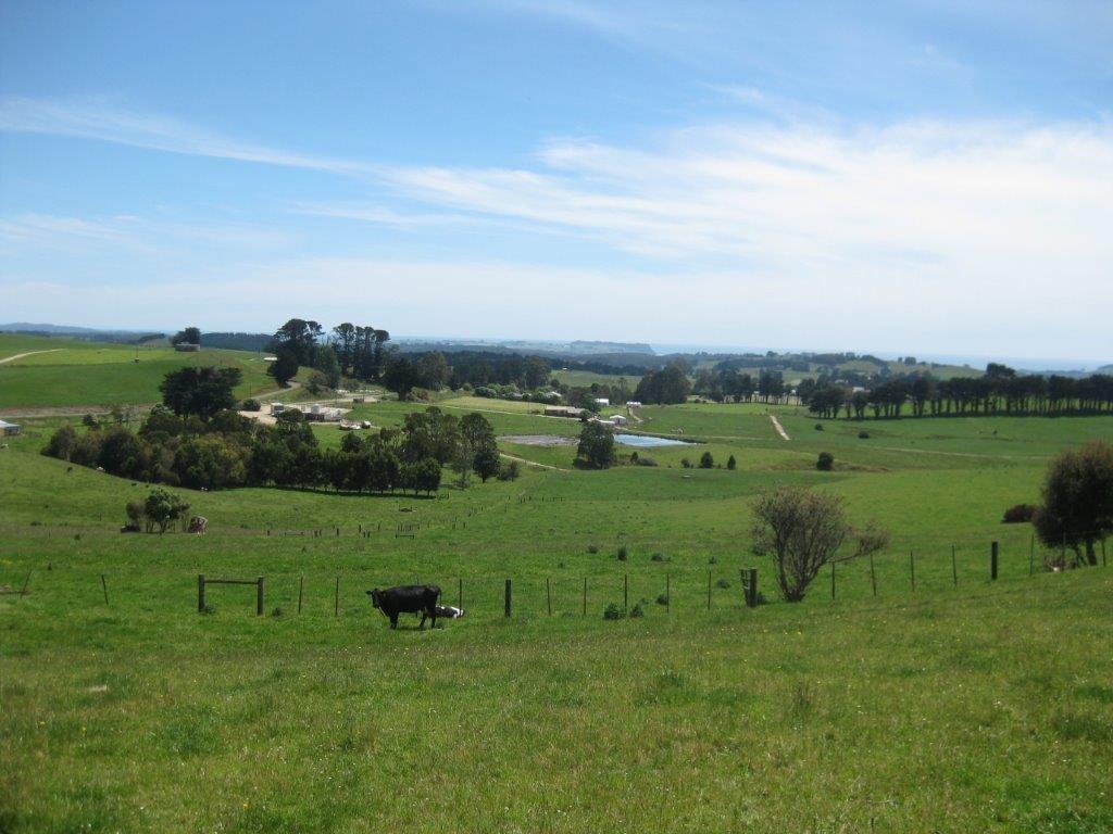 Farm for Sale - 1767 Murchison Highway, Yolla TAS - Farm Property
