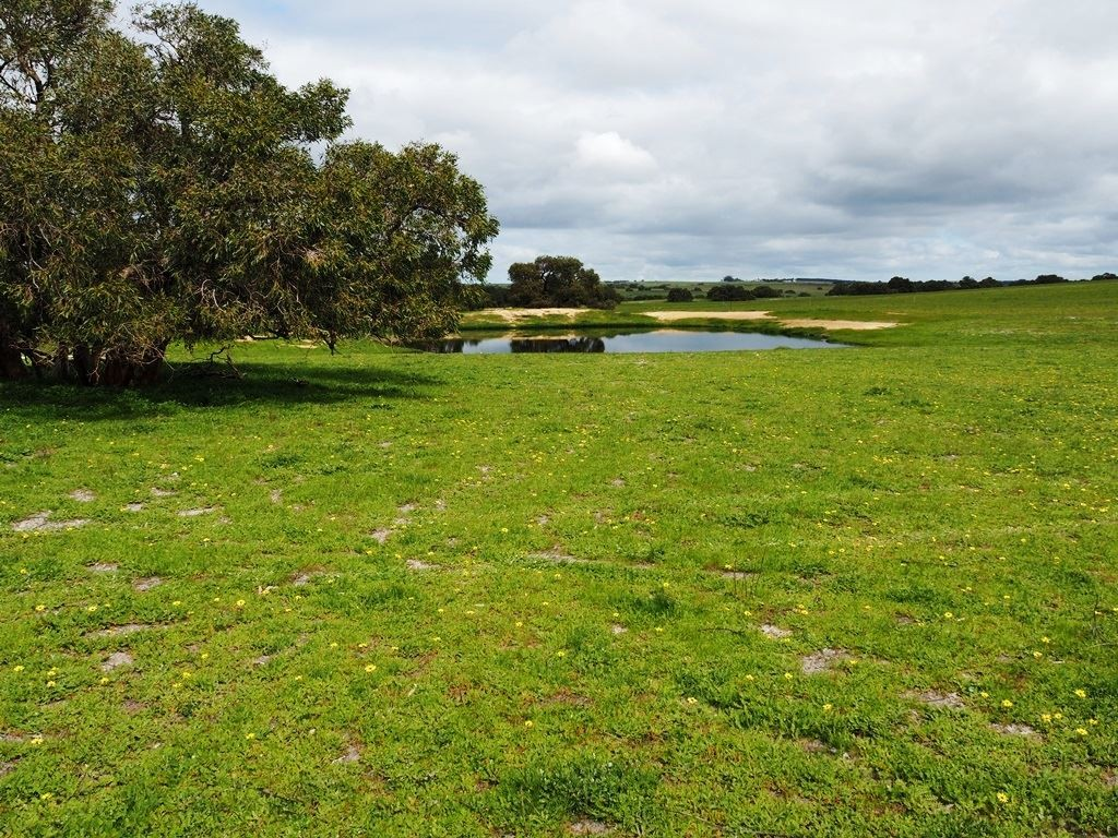 Farm for Sale - Lot 3562 Boundary Road, Moora, WA - Farm Property