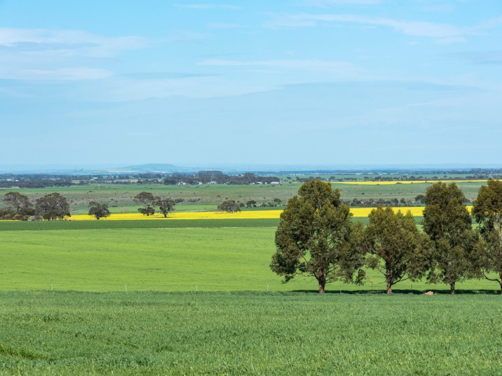 Farm for Sale - 432 Hendersons Road, Meredith, VIC - Farm Property