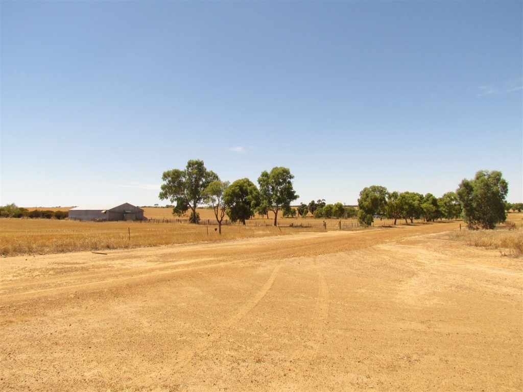 Farm for Sale - Address available by request, Wubin WA - Farm Property