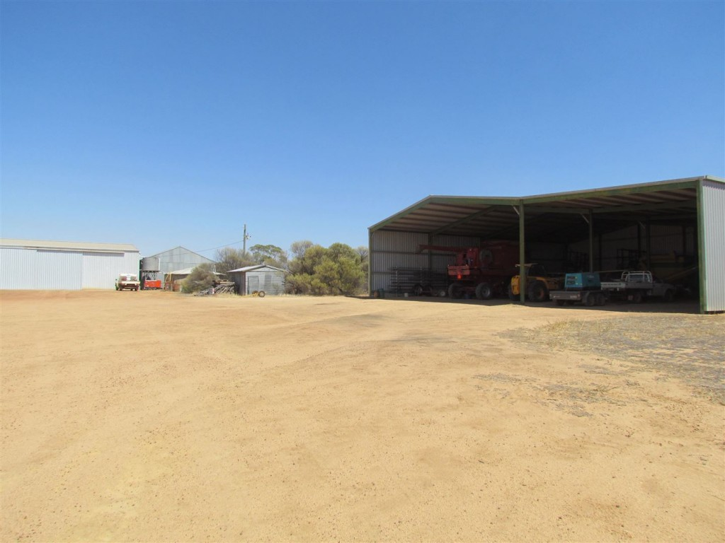 Farm for Sale - 5753 Black Road, Goodlands WA - Farm Property