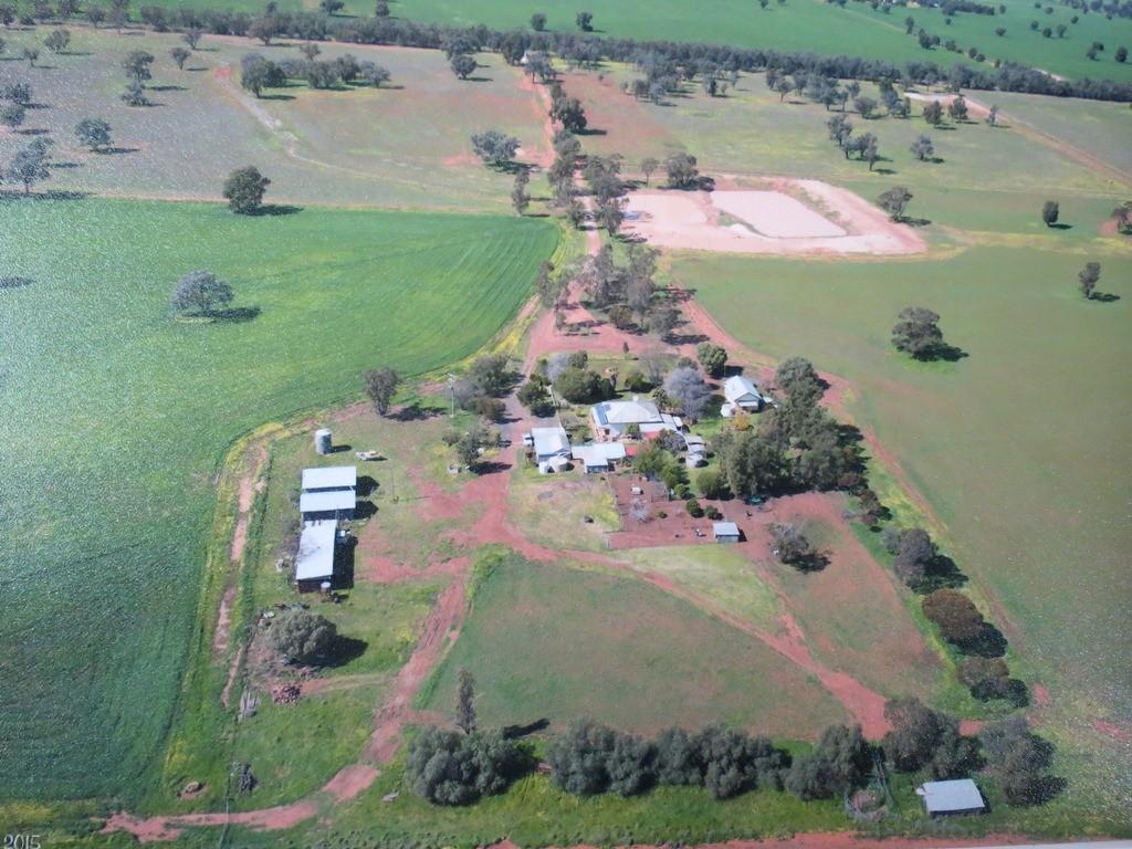 Farm for Sale - 559L Cobboco Road, Narromine, NSW - Farm Property