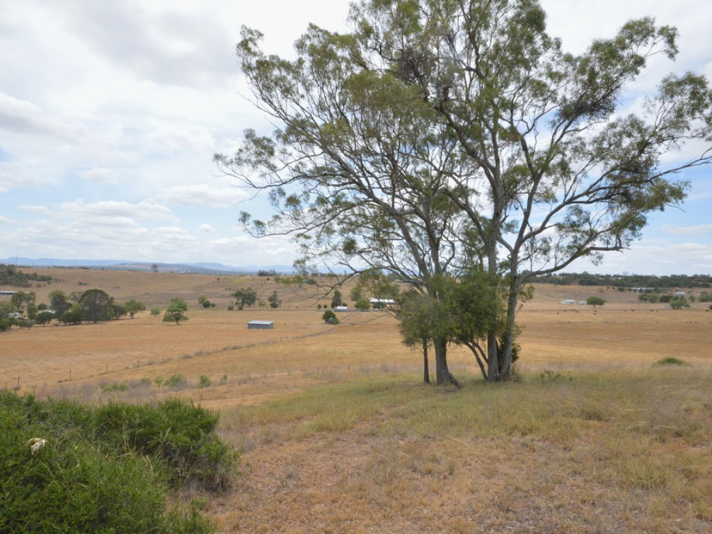 Farm for Sale - Lot 624 Diery Street, Rosenthal Heights, QLD - Farm Property