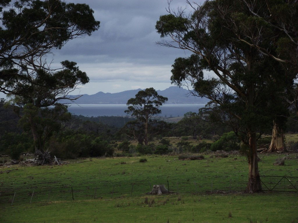 Farm for Sale - . Bresnehans Road, Little Swanport, TAS - Farm Property